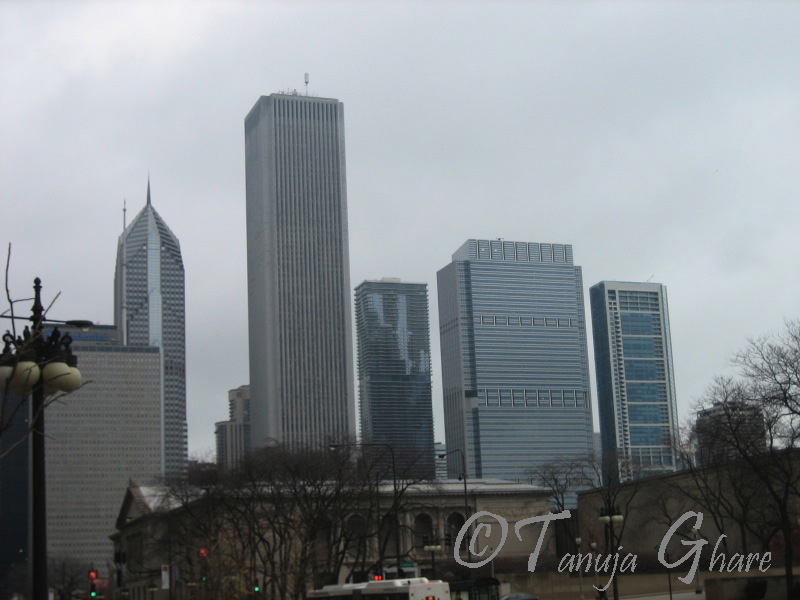 Chicago Skyline On A Cold Day